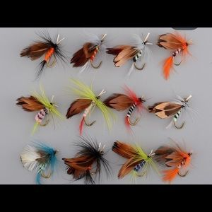 12cs/set Butterfly style Salmon /trout dry flies